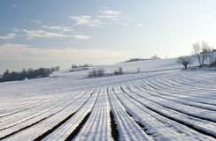 Wintry landscape Stock Image