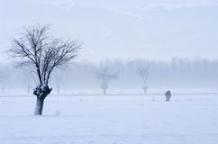 Wintry landscape. With two persons Stock Photo