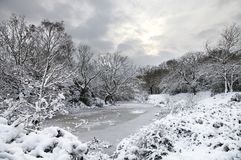 Wintry Landscape. A wintry landscape on a cloudy day Stock Photography