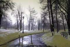 Wintry landscape in evening. View of the park in snow Royalty Free Stock Photography