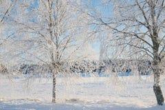 Wintry landscape Stock Photo