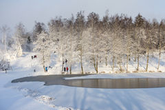 Wintry landscape Royalty Free Stock Image