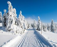 Wintry landscape with modified cross country skiing way Royalty Free Stock Image