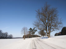 Wintry landscape with snowy road Stock Photo