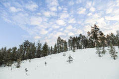Wintry landskap i Lapland, Finland Royaltyfri Bild