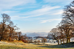 Wintry Morning English Lake District. View down a shallow valley between bare trees across frosty fields to distant mountains Royalty Free Stock Photography