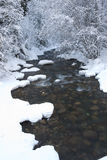 Wintry mountain stream. Stock Images
