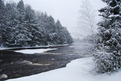 Wintry River. A river running threw the forest during the wintertime Stock Photography