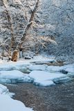 Wintry river landscape Stock Photography