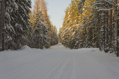 Wintry road. In the afternoon sun in western Finland Stock Images