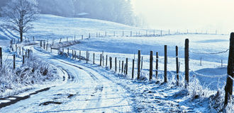 Wintry road in countryside. Scenic view of snow covered road in wintry countryside Royalty Free Stock Photos