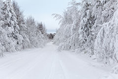 Wintry road Royalty Free Stock Photography