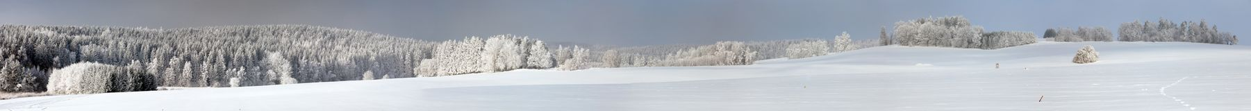 Wintry view from Bohemian and Moravian highlands. White frost on forest trees and snow cowered field Stock Image