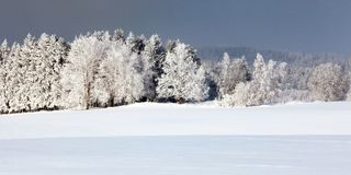 Wintry view from Bohemian and Moravian highlands. White frost on forest trees and snow cowered field Royalty Free Stock Image
