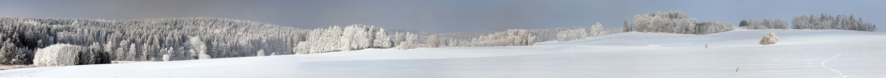 Wintry view from Bohemian and Moravian highlands. White frost on forest trees and snow cowered field Stock Photos