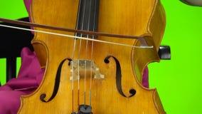 Wiolonczelowy łęk dotyka sznurki zielony ekran z bliska zbiory