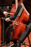 Wiolonczelowy gracz Kompozytor, muzyka Portret bawić się muzykę klasyczną na wiolonczeli na czarnym tle wiolonczelista Copyspace zdjęcie royalty free