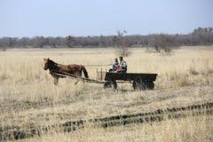 Wiosek rodzinne przejażdżki przez wiosny pola w końskiej furze Obrazy Stock