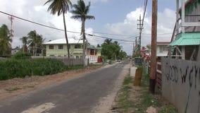 Wiosek ulicy w Guyna zbiory wideo