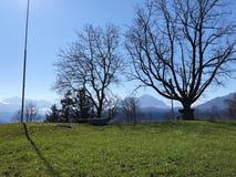 Wiosen łąki na skłonach góra Rigi i paśniki fotografia stock