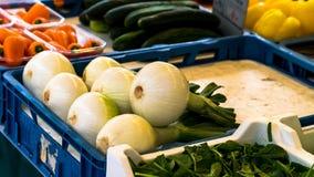 Wiosen cebule także znać jako Sałatkowe cebule, Scallions lub Zielony Oni, Fotografia Royalty Free