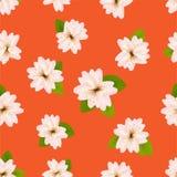 Wiosen Czereśniowi okwitnięcia Bezszwowy wzór z japończykiem Sakura Menchia kwitnie na pomarańczowym tle Romantyczna wektorowa il Obraz Stock