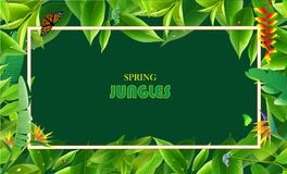Wiosen dżungli tła s ilustracja wektor