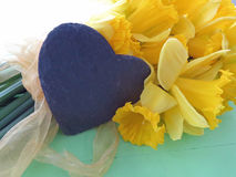 Wiosen daffodils Zdjęcia Royalty Free