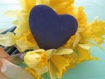 Wiosen daffodils Zdjęcie Royalty Free