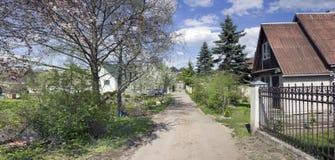 Wiosen jedlinowi drzewa na wiosek ulicach Zdjęcia Stock