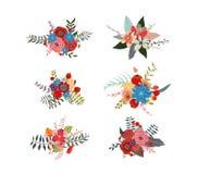 Wiosen kwieciści grona, kwiatów wianki, bukietów elementy ilustracji