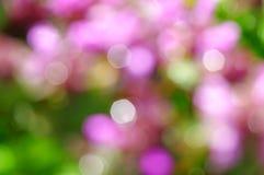 Wiosny plamy tło Zdjęcie Stock