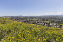 Wiosen zbocza w Tysiąc dębach Kalifornia Obraz Royalty Free