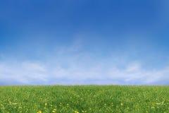 wiosenne pastwiska razem Fotografia Royalty Free