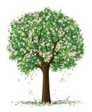 wiosenne sylwetki drzewa wektora ilustracja wektor