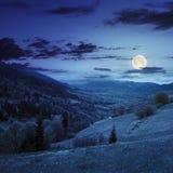 Wioska na zbocze łące z lasem w górze przy nocą Zdjęcie Stock