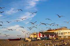 Wioska rybacka na Atlantyk wybrzeżu Portugalia Zdjęcia Stock
