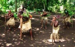 Wioska Tancząca - Vanuatu Zdjęcie Stock