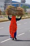 wioski indyjska kobieta Fotografia Royalty Free