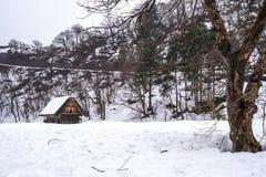 Wioski Shirakawago i Gokayama s? jeden Japonia UNESCO ?wiatowego dziedzictwa miejsca Rolny dom w wioski i g?ry behin zdjęcie stock