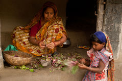 Wioski życie Sunderban, India Zdjęcia Royalty Free