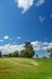 wiosna łąkowa Obrazy Stock