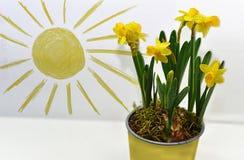 Wiosna barwi abstrakcję używać barwionych ołówki Zdjęcie Royalty Free