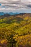 Wiosna barwi w Appalachian górach w Shenandoah parku narodowym, Virginia. Obraz Stock