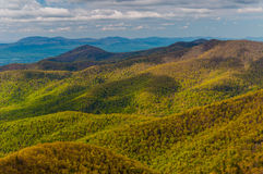 Wiosna barwi w Appalachian górach w Shenandoah parku narodowym, Virginia. Fotografia Stock
