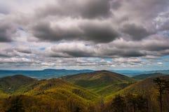 Wiosna barwi w Appalachians na chmurnym dniu,   w Shenandoah parku narodowym, Virginia. Zdjęcie Stock