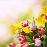 Wiosna bukiet obrazy stock