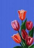Wiosna bukiet Zdjęcie Stock