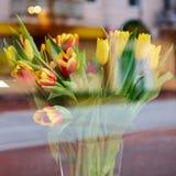 Wiosna bukiet Kolorowi tulipany zdjęcia stock