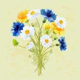 Wiosna bukiet pole kwiaty i farb pluśnięcia Obrazy Stock